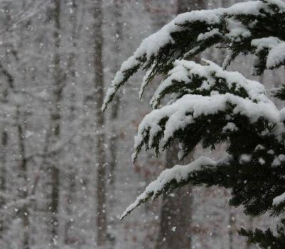 snowfall-96661_400